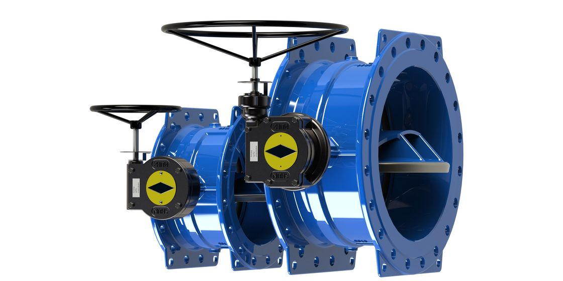 Low Torque Blue Double Eccentric Butterfly Valve With Dovetail Seal Design